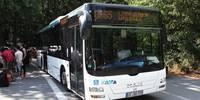 Der Waldseebus die Linie für heiße Tage
