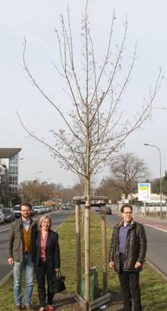 Baumspende Familie Buxbaum
