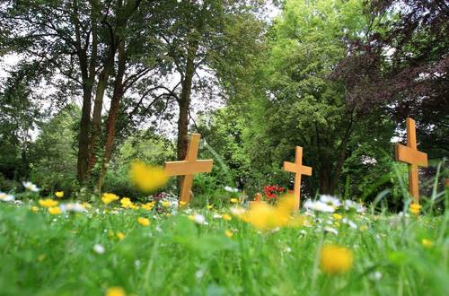 Naturnaher Friedhof