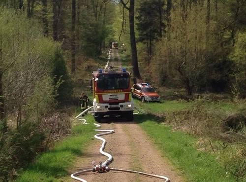 Brandgefahr im Stadtwald