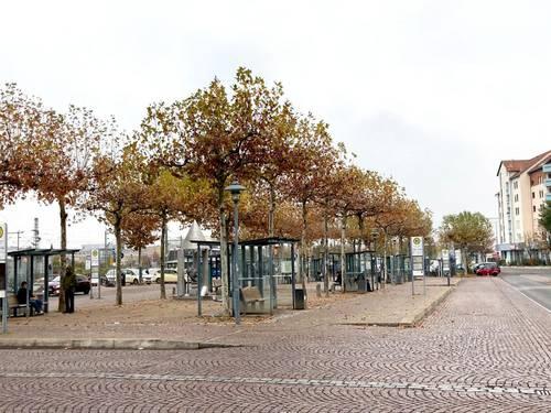 Platanen Bahnhof