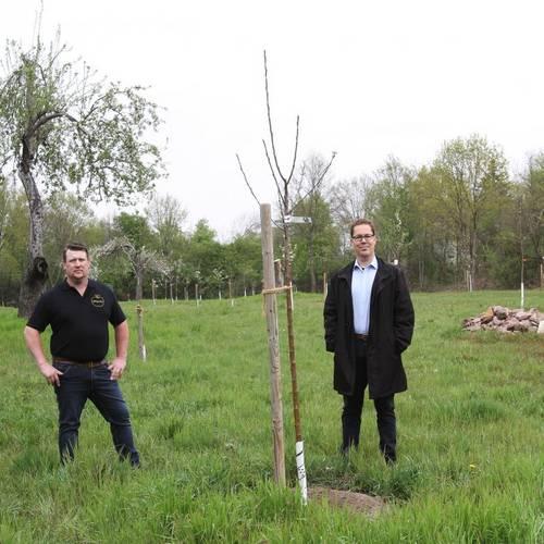 Streuobstwiesenpflanzung Christian Klug Jan Werner