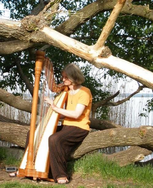 Kauf einer Harfe für die Musikschule