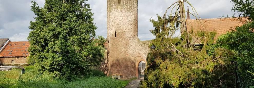 Sturmschaden am Stumpfen Turm