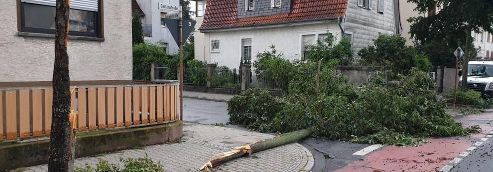 Spenden Sturmschäden