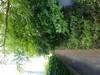 tn_13b75905fb37c961045c32fc76ce31f0.jpg